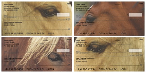 Horses Seeing Eye to Eye Personal Horse Checks