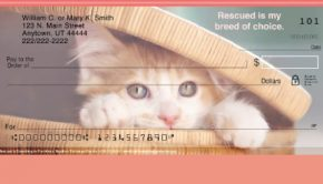 Kitten and Cat Checks