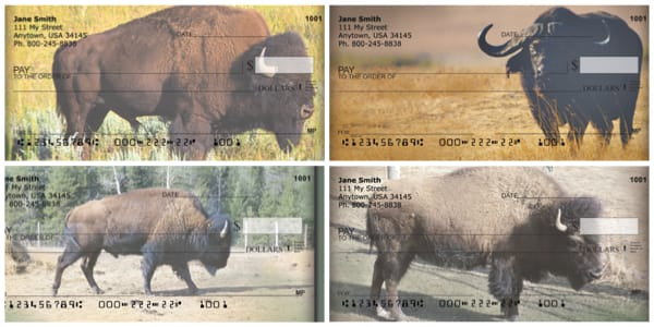 Buffalo Personal Checks