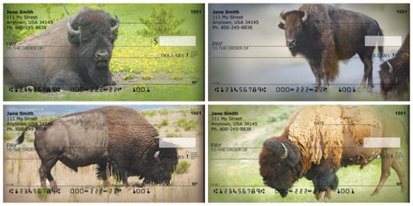 Home On The Range Buffalo Personal Checks